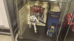 SDF and Robotech Shelf