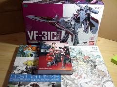 VF31C and books